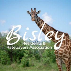 resize Bisley RRA